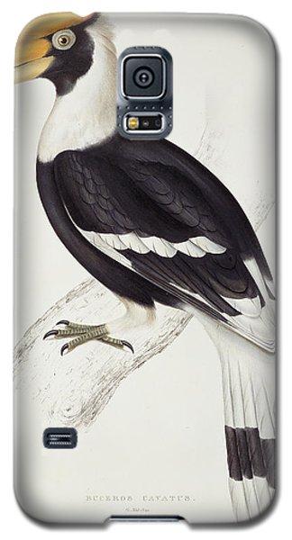 Great Hornbill Galaxy S5 Case