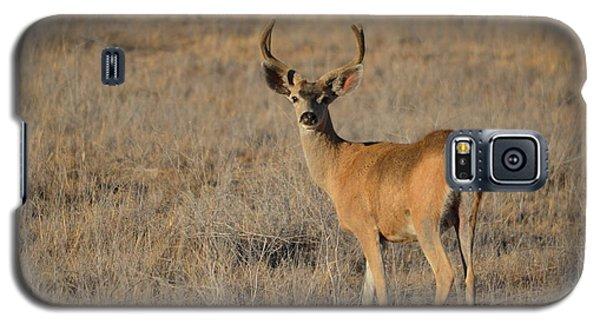 Buck 4 Galaxy S5 Case