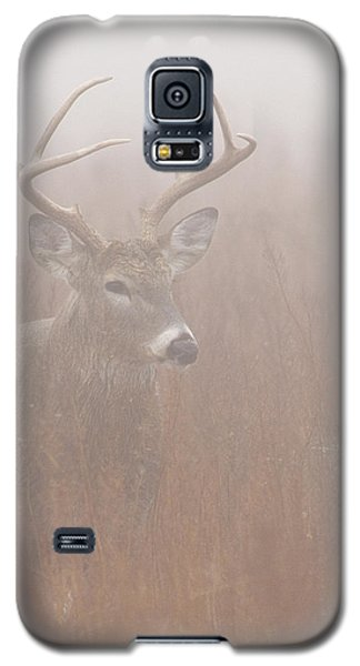 Buck In Fog Galaxy S5 Case
