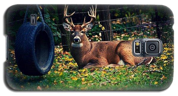 Buck In The Back Yard Galaxy S5 Case