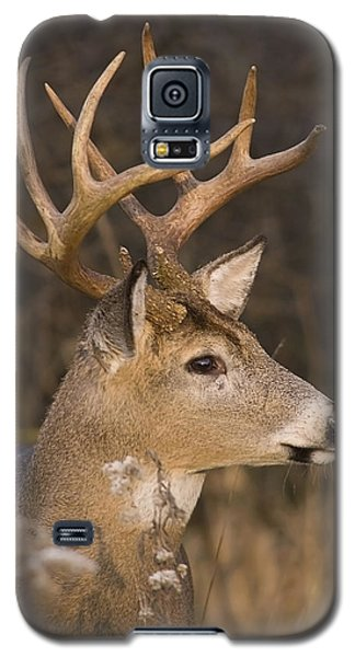 Buck Portrait Galaxy S5 Case