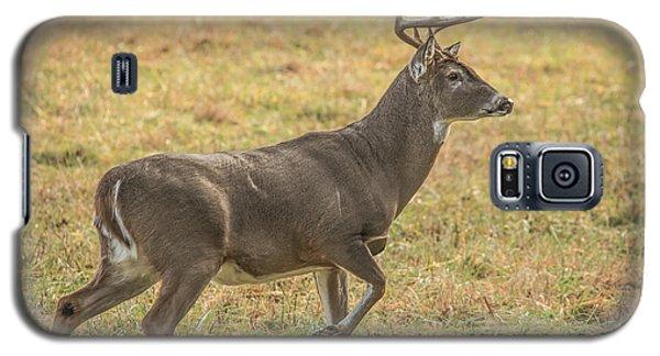 Buck Stallion Galaxy S5 Case