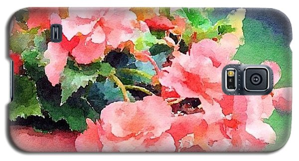 Bucket O Begonias Galaxy S5 Case by Anna Porter