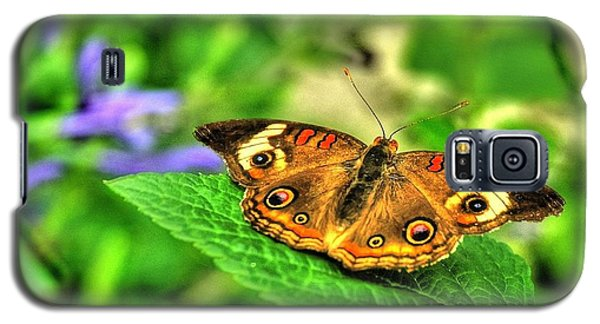 Buckeye Butterfly Galaxy S5 Case by Ed Roberts