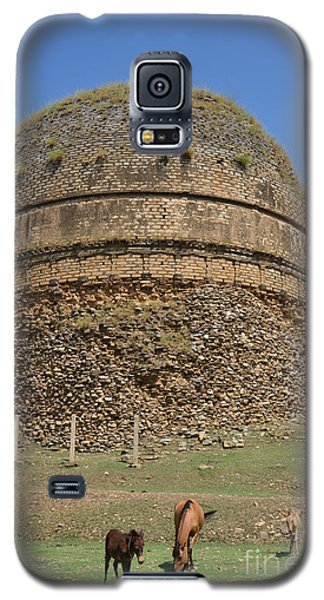 Buddhist Religious Stupa Horse And Mules Swat Valley Pakistan Galaxy S5 Case