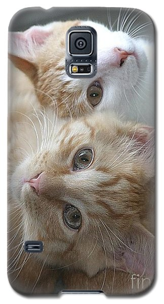 Buddies For Life Galaxy S5 Case by Living Color Photography Lorraine Lynch