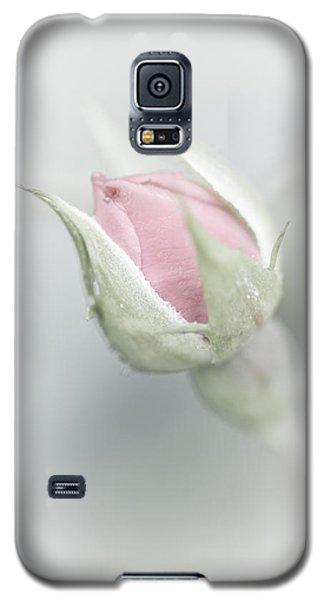 Budding Beauty Galaxy S5 Case