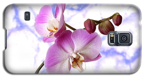 Budding Orchids Galaxy S5 Case by Mariarosa Rockefeller