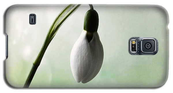 Budding Snowdrop  Galaxy S5 Case by Terence Davis