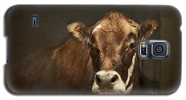 Buddy Galaxy S5 Case by Aimelle