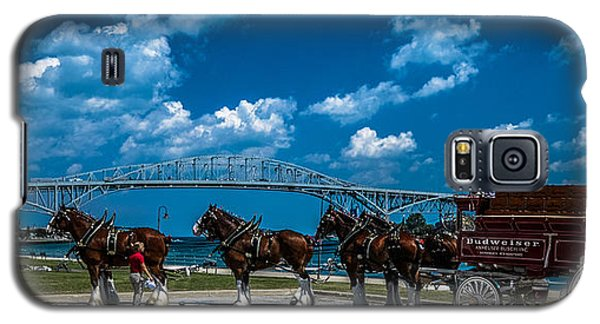 Budweiser Clydsdales And Blue Water Bridges Galaxy S5 Case