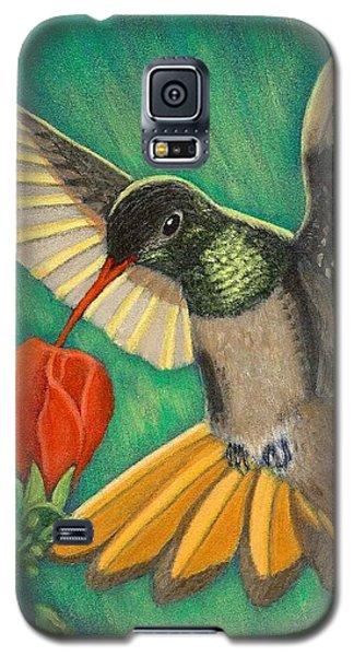 Buff-bellied Hummingbird Galaxy S5 Case