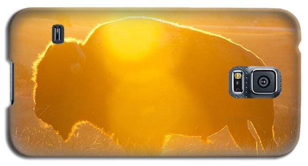 Buffalo Sunrise Galaxy S5 Case by Kevin Bone