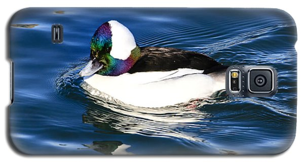 Bufflehead Galaxy S5 Case by Gary Hall