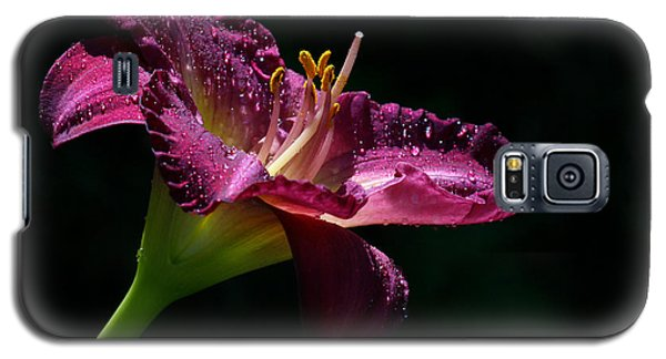 Bugler Galaxy S5 Case by Doug Norkum