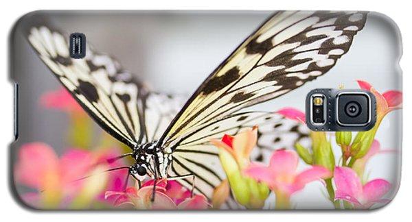 Built-in Straw Galaxy S5 Case