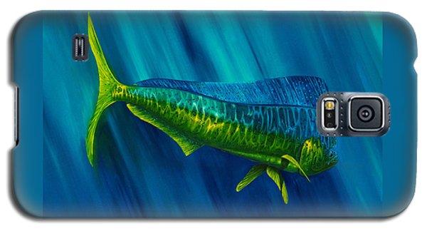 Bull Dolphin Galaxy S5 Case