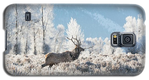 Galaxy S5 Case featuring the photograph Bull Elk At Winter Dawn by Yeates Photography