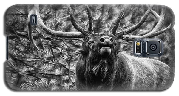 Bull Elk Bugling Black And White Galaxy S5 Case