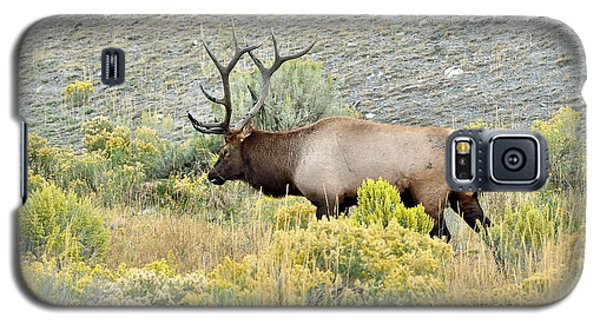 Galaxy S5 Case featuring the photograph Bull Elk In Rut by Yeates Photography