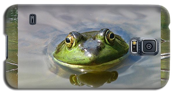 Bull Frog And Pond Galaxy S5 Case