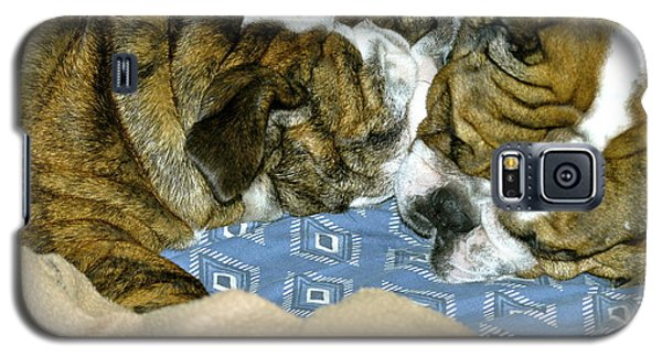 Galaxy S5 Case featuring the photograph Bulldog Love Forever  by Lehua Pekelo-Stearns