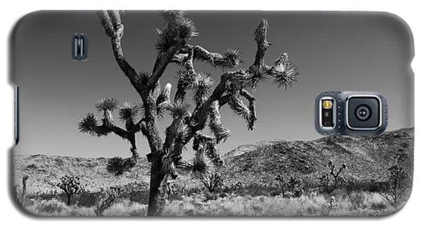 Bullet The Blue Sky - Joshua Tree N.p Galaxy S5 Case