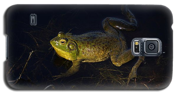 Galaxy S5 Case featuring the photograph Bullfrog by Janis Knight