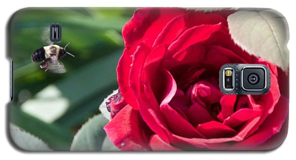Bumble Bee Heading To The Rose Galaxy S5 Case