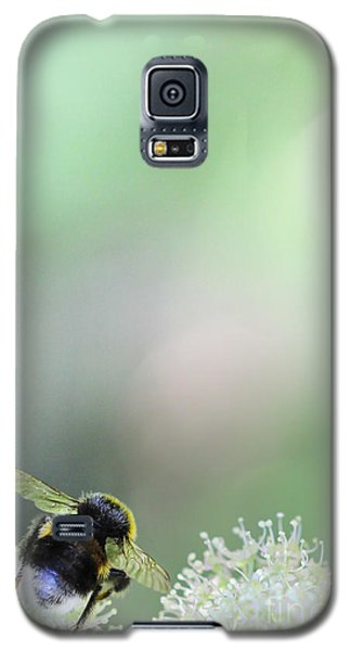 Galaxy S5 Case featuring the photograph Bumble Bee by Jivko Nakev
