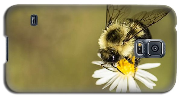 Bumble Bee Macro Galaxy S5 Case by Debbie Green