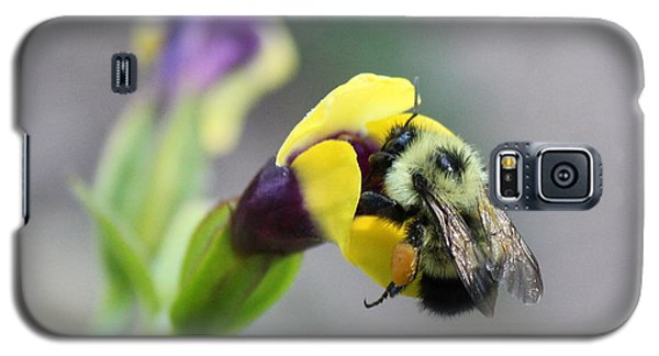 Galaxy S5 Case featuring the photograph Bumble Bee Making A Wish by Penny Meyers