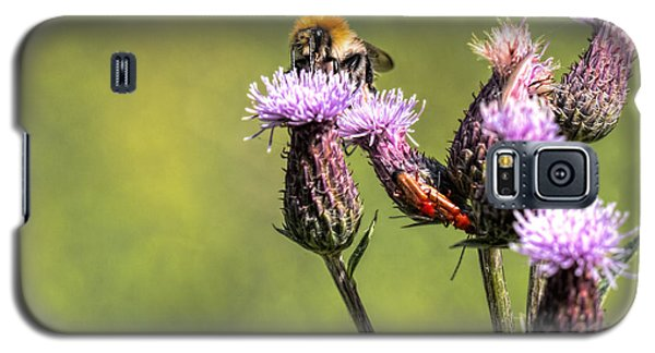 Galaxy S5 Case featuring the photograph Bumblebee On Thistl by Leif Sohlman