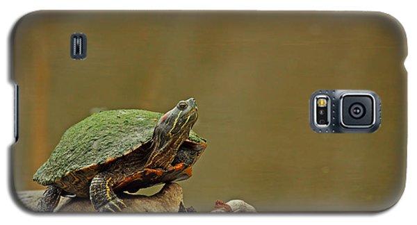 Bump On A Log Galaxy S5 Case
