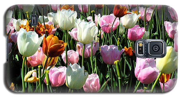Galaxy S5 Case featuring the photograph Bunch-o-tulips by Mark McReynolds