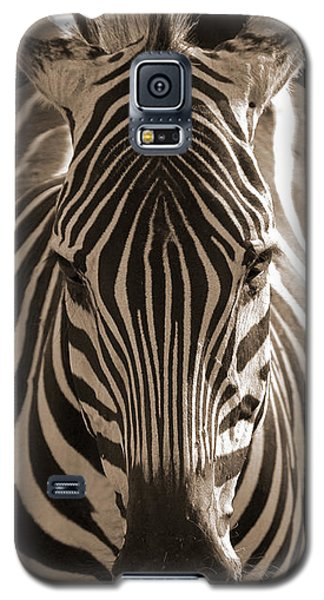 Galaxy S5 Case featuring the photograph Burchell's Zebra by Chris Scroggins