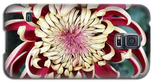 Burgandy Mum Galaxy S5 Case