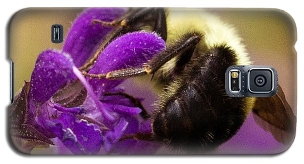 Galaxy S5 Case featuring the photograph Buried by Cathy Donohoue