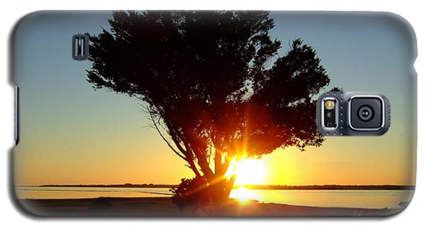 Galaxy S5 Case featuring the photograph Burning Bush by Bob Sample