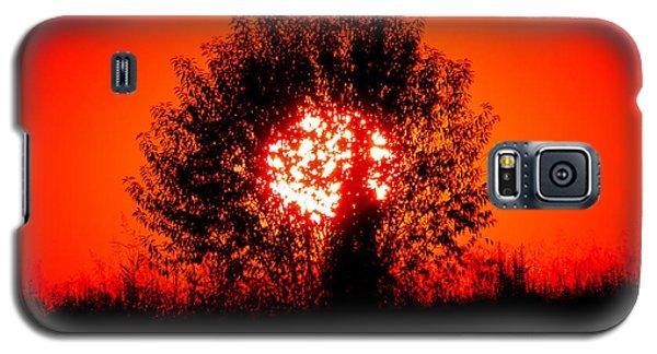 Burning Bush Galaxy S5 Case by Nick Kirby