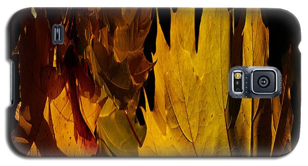 Burning Fall Galaxy S5 Case by Jouko Lehto