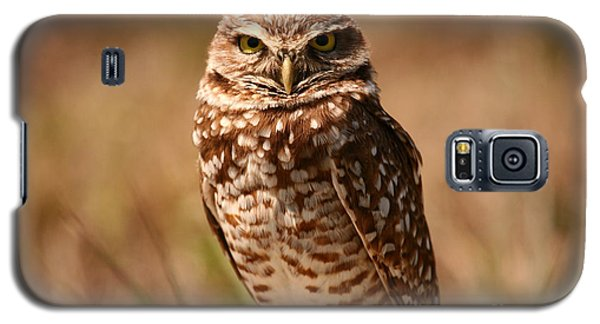 Galaxy S5 Case featuring the photograph Burrowing Owl Impressions by John F Tsumas