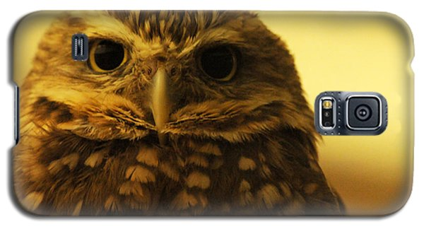 Galaxy S5 Case featuring the photograph Burrowing Owl by Olivia Hardwicke