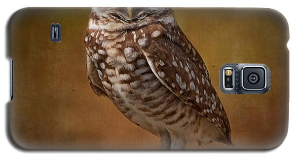 Burrowing Owl Portrait Galaxy S5 Case