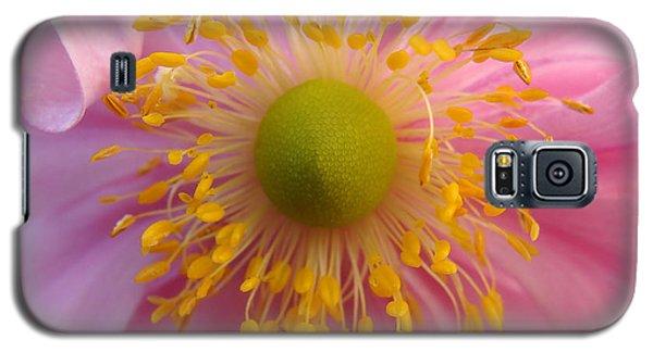 Windflower Galaxy S5 Case