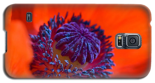 Bursting With Colour Galaxy S5 Case
