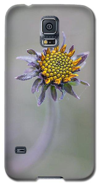 Bush Sunflower Opening Galaxy S5 Case