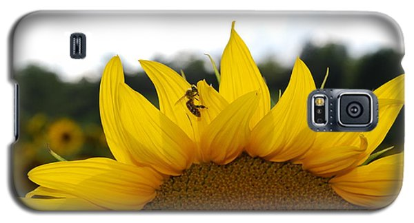 Busy Bee Galaxy S5 Case