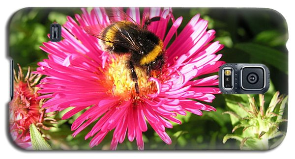 Galaxy S5 Case featuring the photograph Busy Bee by Bev Conover