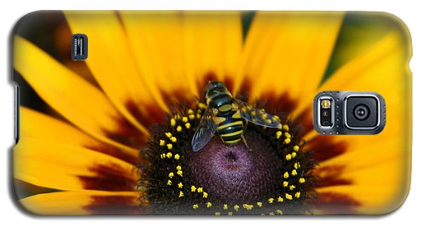 Galaxy S5 Case featuring the photograph Busy Bee by Denyse Duhaime